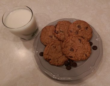 Chunky-Peanut-Butter-and-Oatmeal-Chocolate-Chipsters