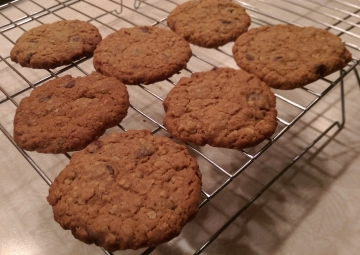 Chunky-Peanut-Butter-and-Oatmeal-Chocolate-Chipsters2
